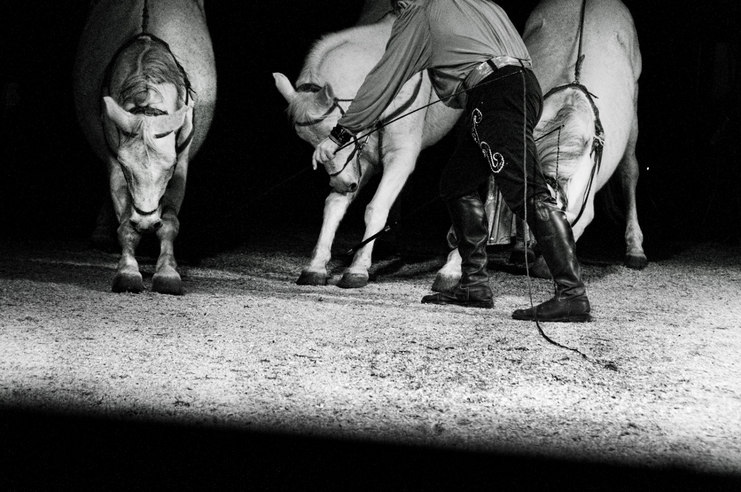 Art and Documentary Photography - Loading nuovoordine03.jpg