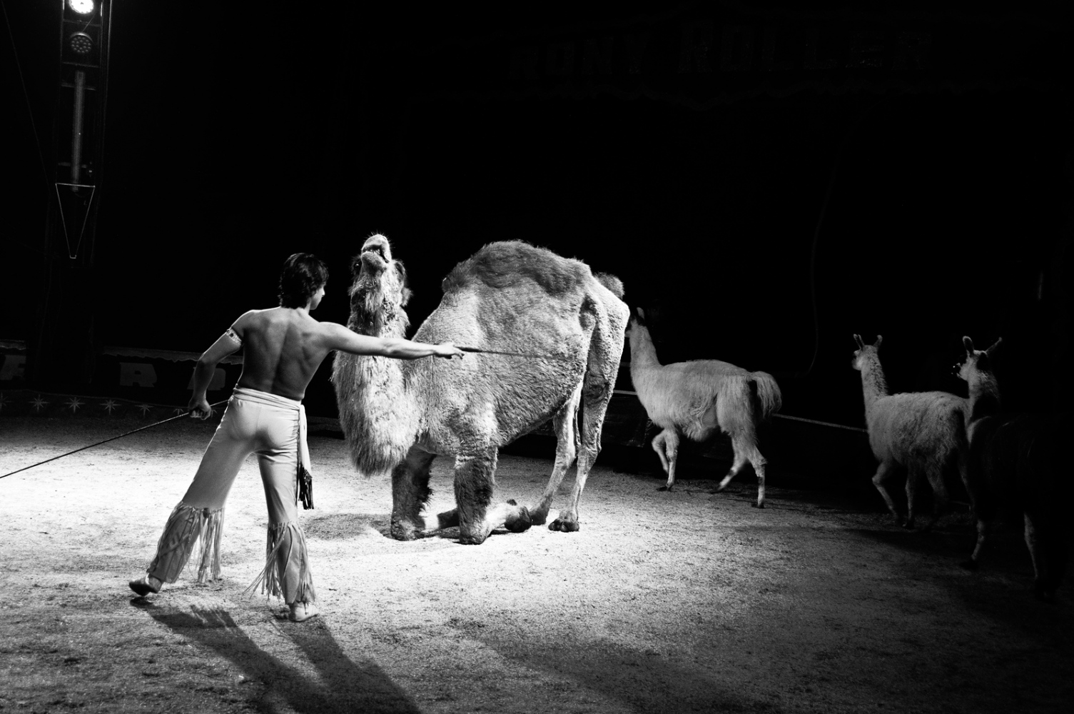 Art and Documentary Photography - Loading nuovoordine19.jpg