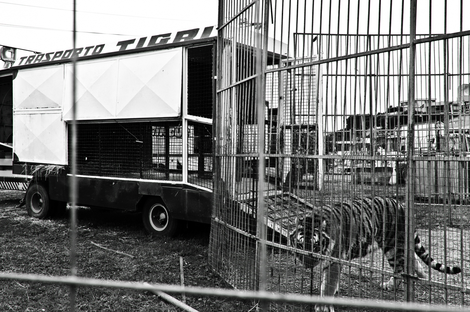 Art and Documentary Photography - Loading nuovoordine23.jpg