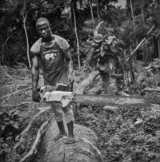 Motosierra offering its services to individuals to open pieces of forest for new cultives and to cut wood for building houses. Bipindi, Cameroon.