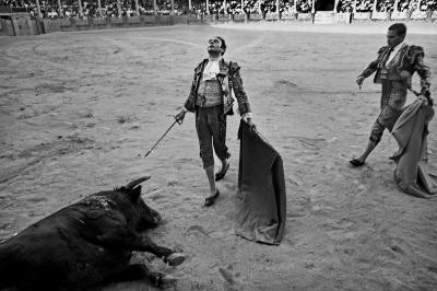 The matador Enrique Ponce delivers the coup de grace. Ronda.