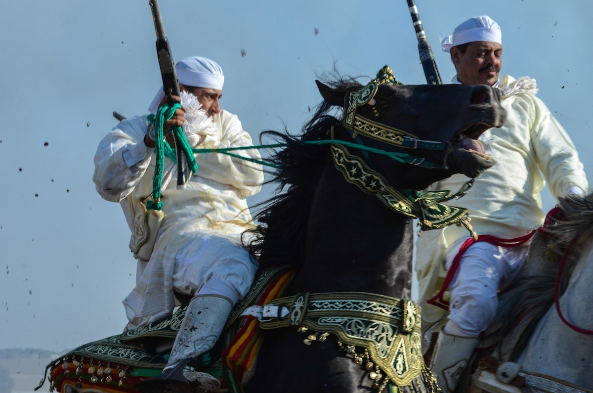 A Riders pulls his horse to a halt on the firing line. Oued Merzeg, Morocco