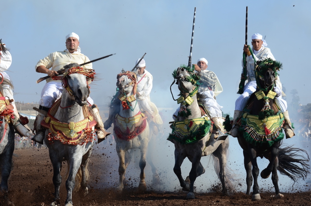 Horses and riders thundering to a stop amongst shots to the ground. Oued Merzeg, Morocco