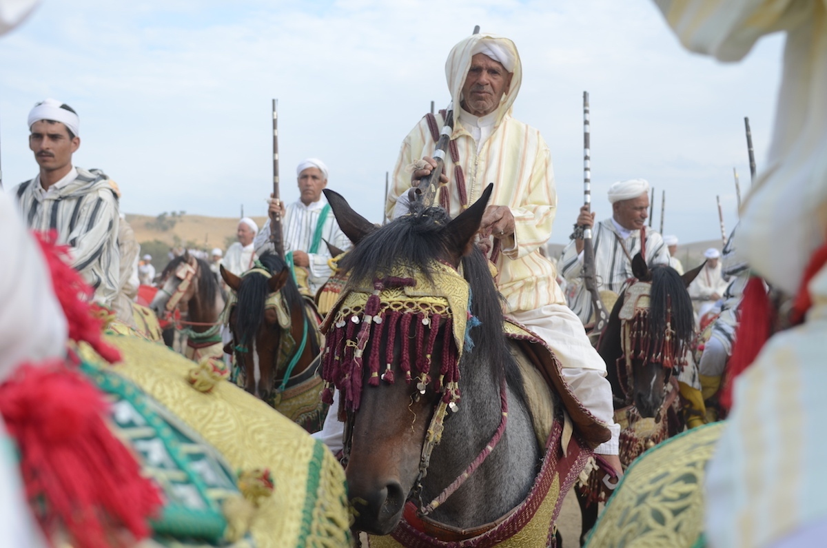 Riders of the former mountain tribes corralling  ahead of a run. Tissa, Morocco