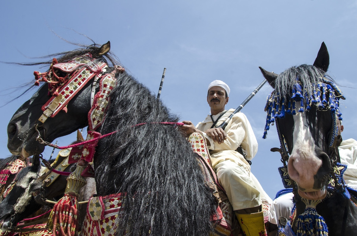 Rider proudly shows his horse as he awaits a judges decision . Tafetechte, Morocco