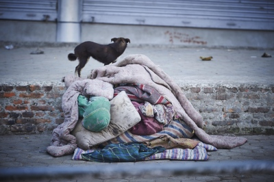 The children explained that even though they have blankets, the ground gets very cold at night. The dogs are good to cuddle with for heat.