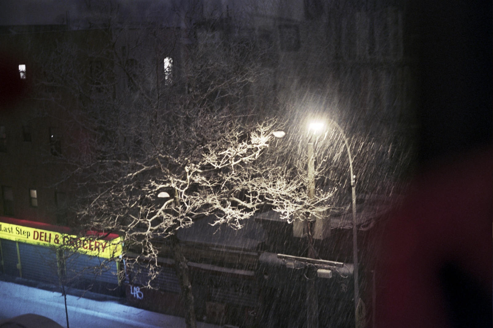 Snow from my window, New York, NY