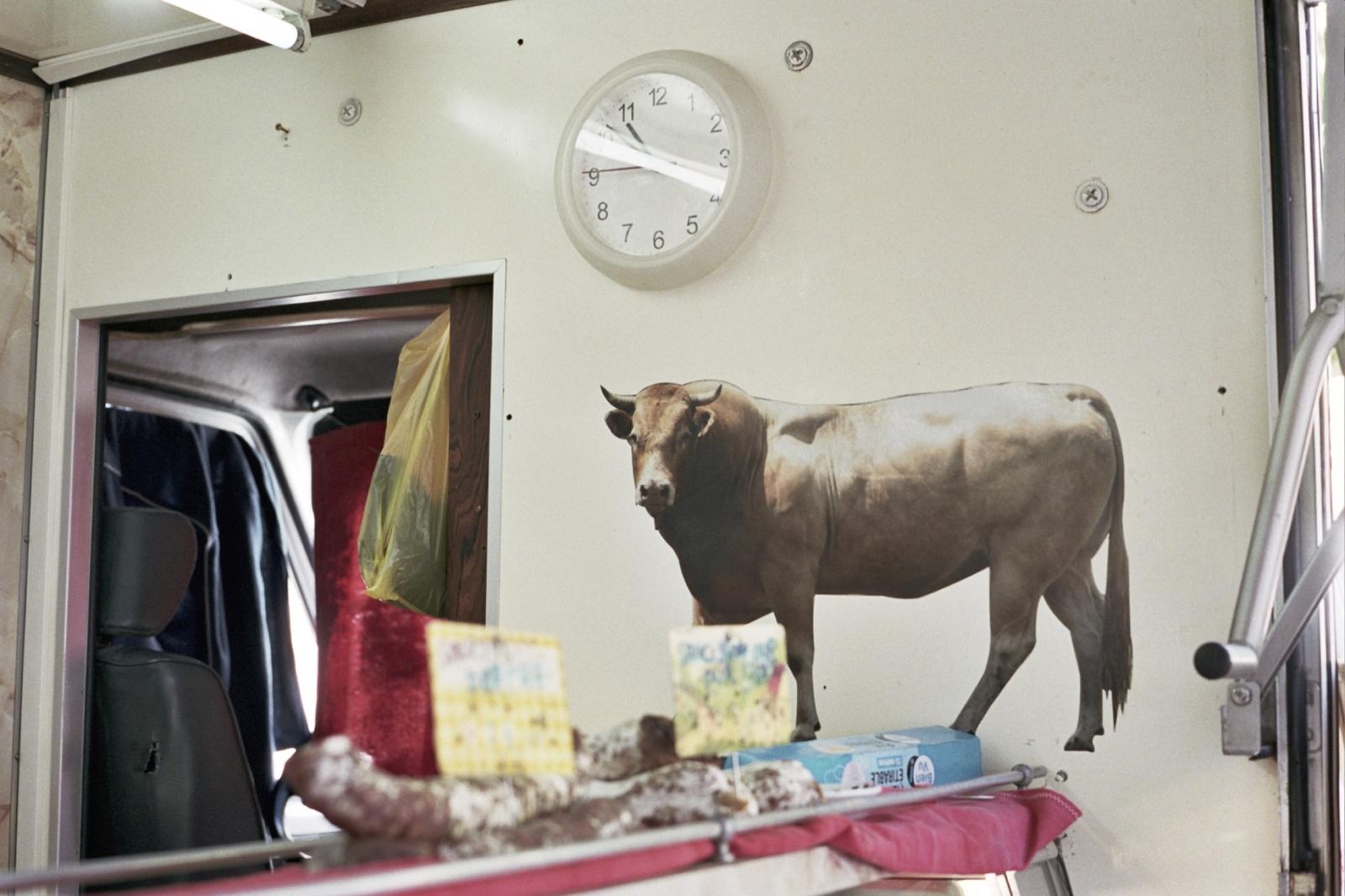 The butcher shop, Arles, France