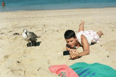 Eva taking a selfie with a seagull, Turo, MA