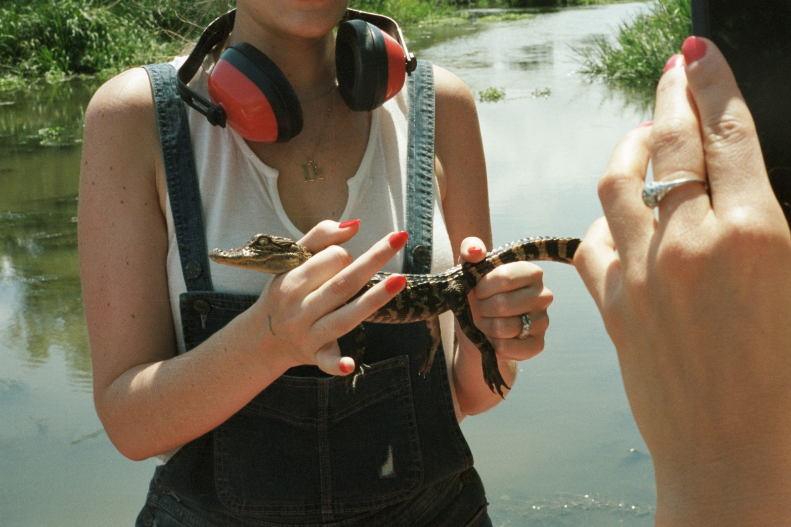 Sara holding a baby alligator, Jean Lafitte Swamp, LA