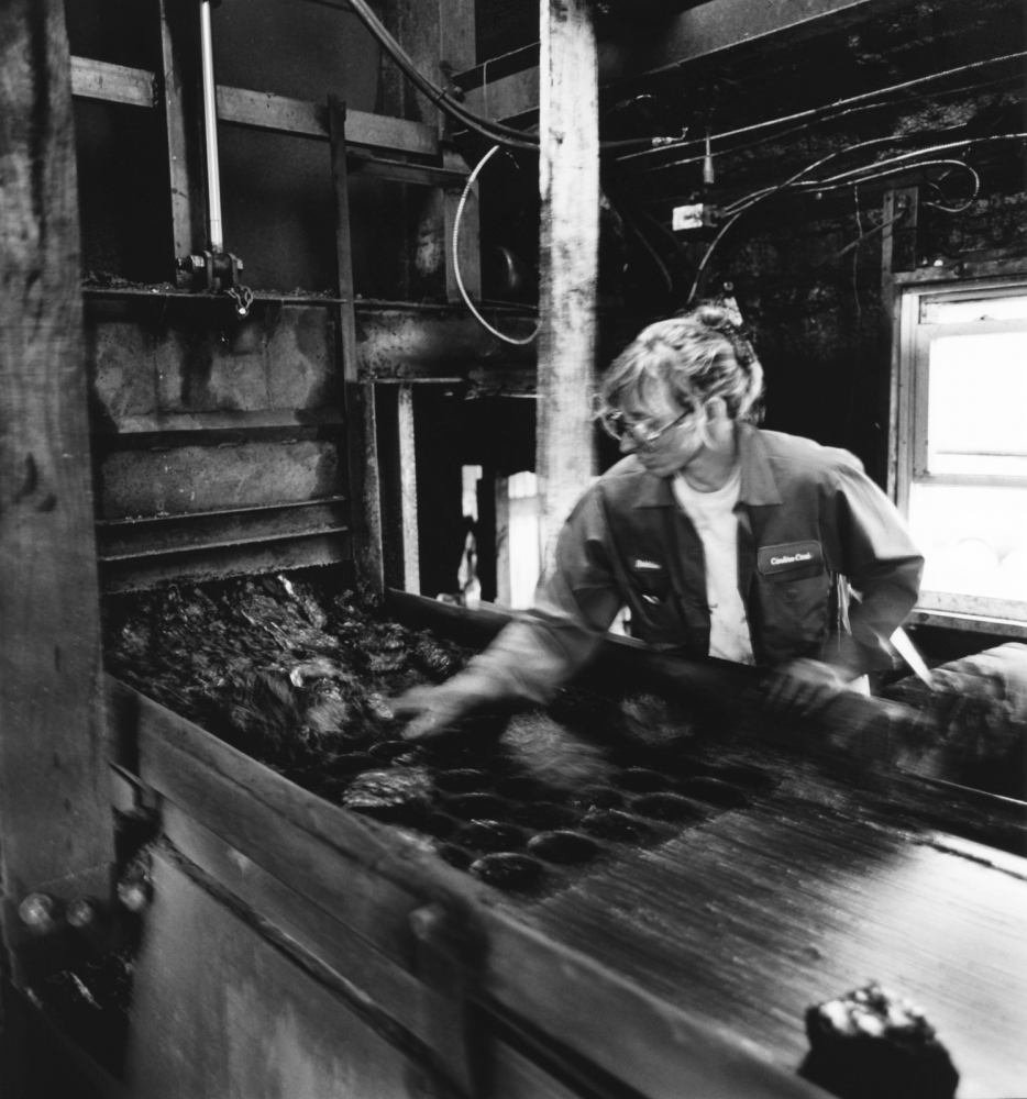 Art and Documentary Photography - Loading Roberta_Orchard_Mine-2.jpg