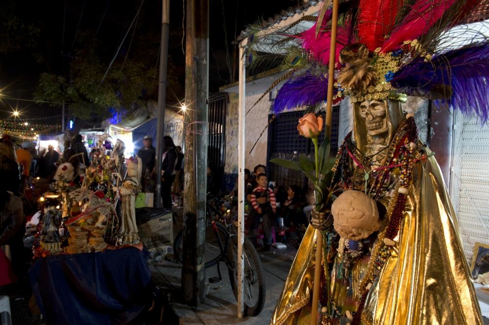 Devoted To La Santa Muerte by janet jarman