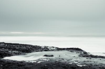 North Coast Santa Cruz, 2015