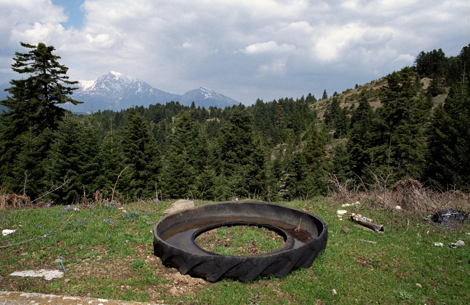 Improvised trough. Northwestern Greece.