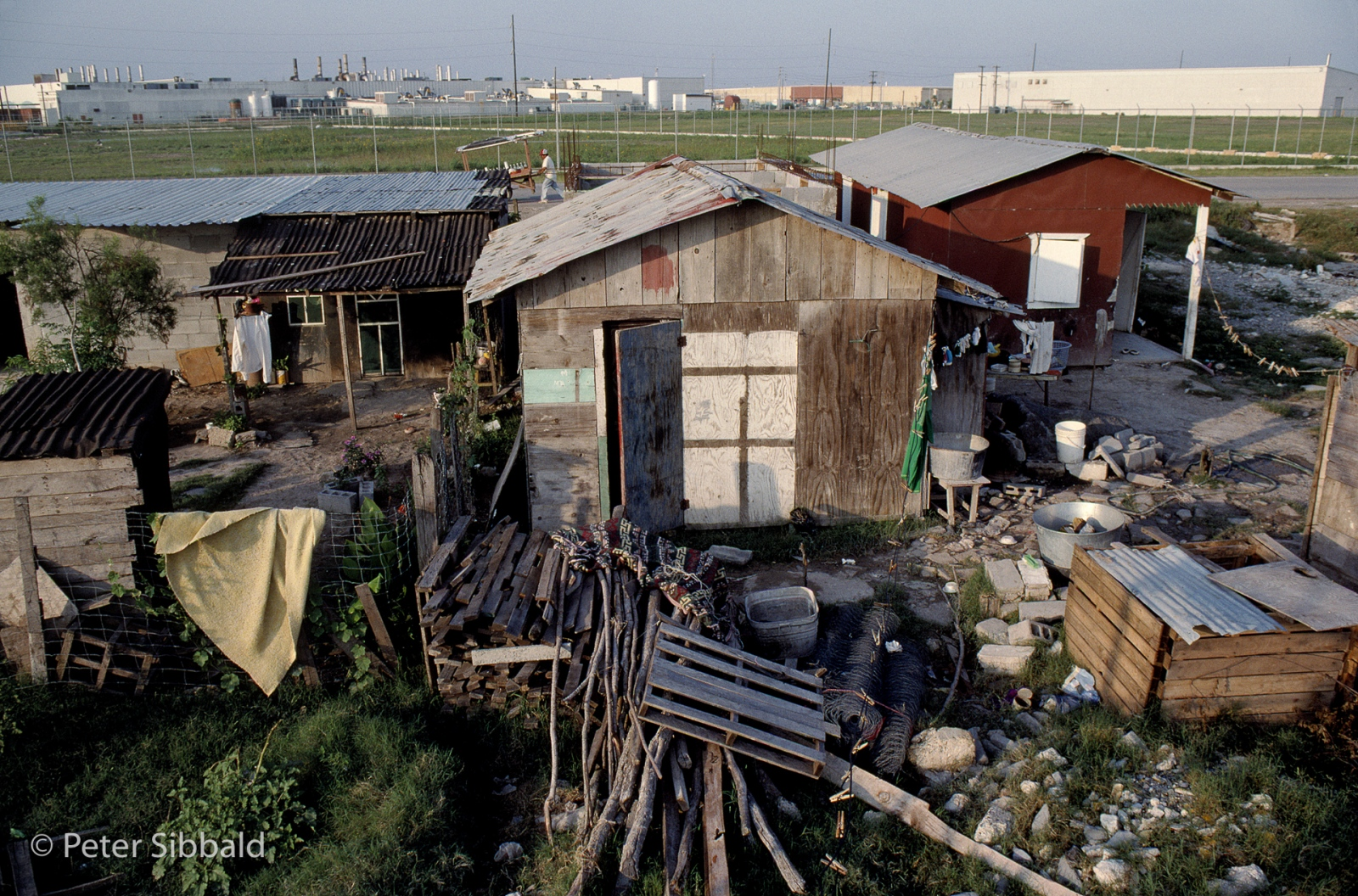 Life in the Colonia of Las Palmas: still without sewers and drainage at the time of this photograph, Las Palmas residents live in what amounts to a mosquito infested swamp. Many raise pigs which run loose and forage from amongst the community's waste. © Peter Sibbald, 1993