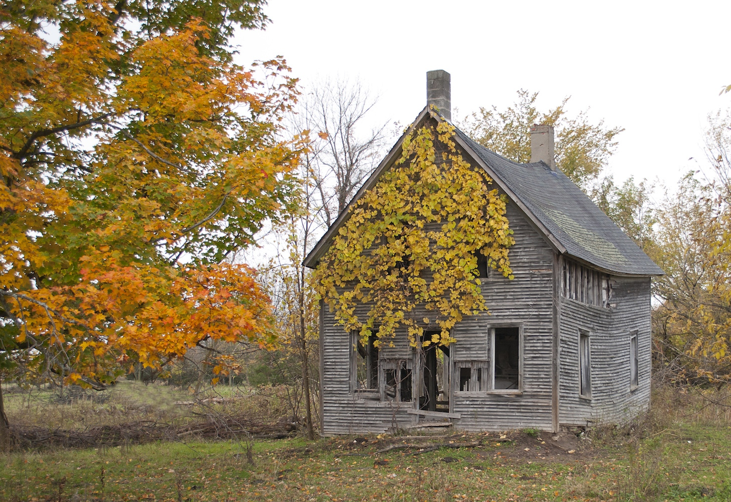 Art and Documentary Photography - Loading autumnhouse.jpg