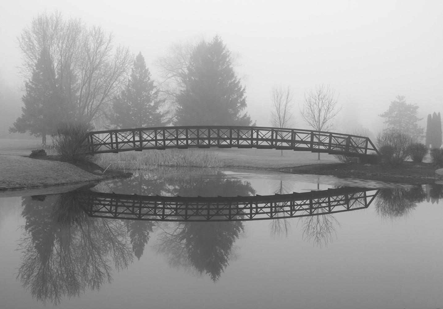 Art and Documentary Photography - Loading Monet_sGarden_1V.jpg