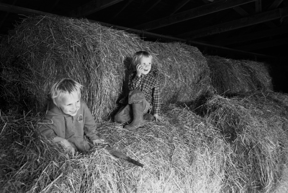 Art and Documentary Photography - Loading Boys in Hay.jpg