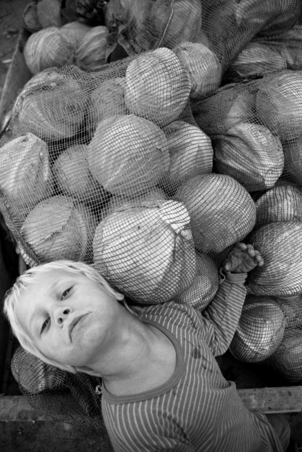 Art and Documentary Photography - Loading Cabbage Boy.jpg