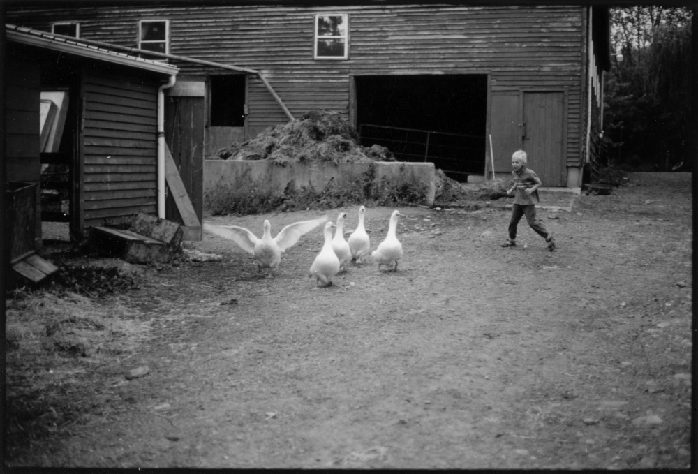 Art and Documentary Photography - Loading Farm 2.jpg