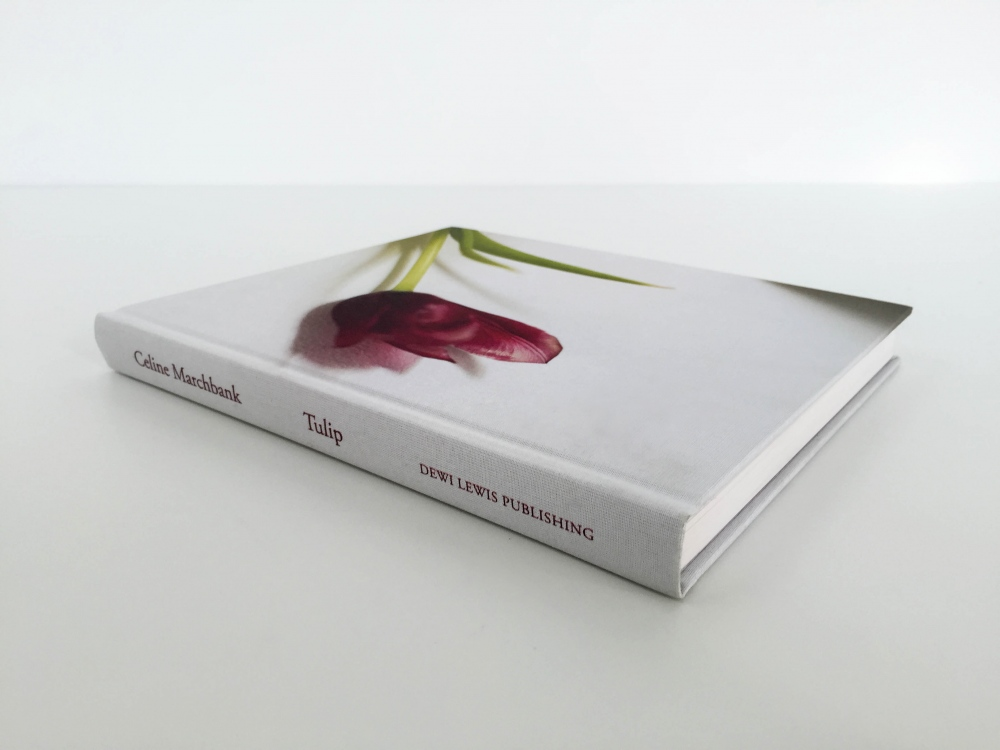 Photography image - Loading CelineMarchbank_TulipBook-1.jpg