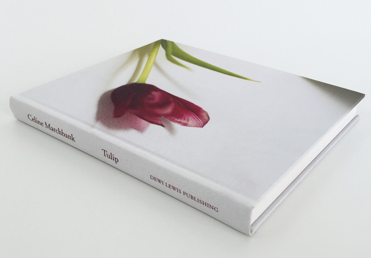 Art and Documentary Photography - Loading CelineMarchbank_Tulip_BOOK_COVER.jpg