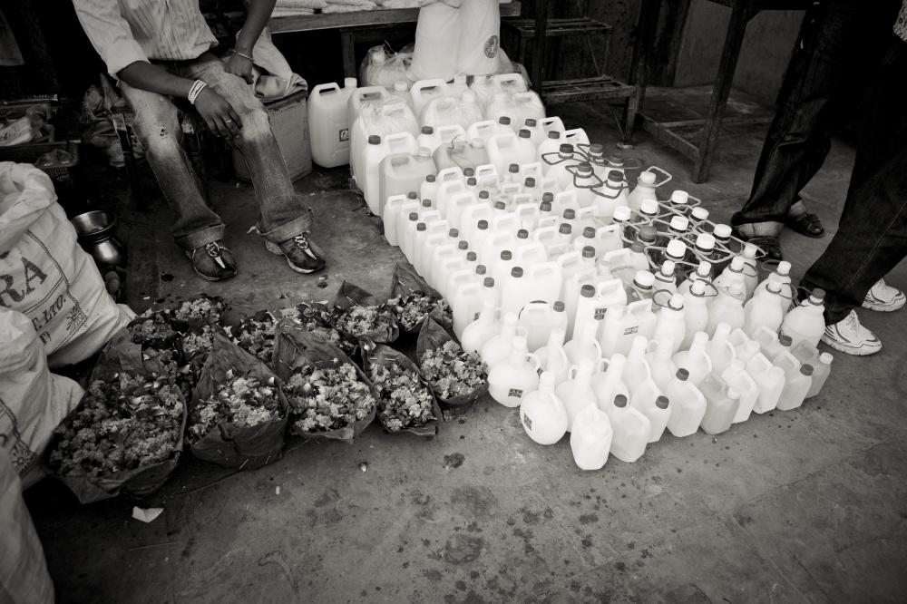 Art and Documentary Photography - Loading kempo-83.jpg