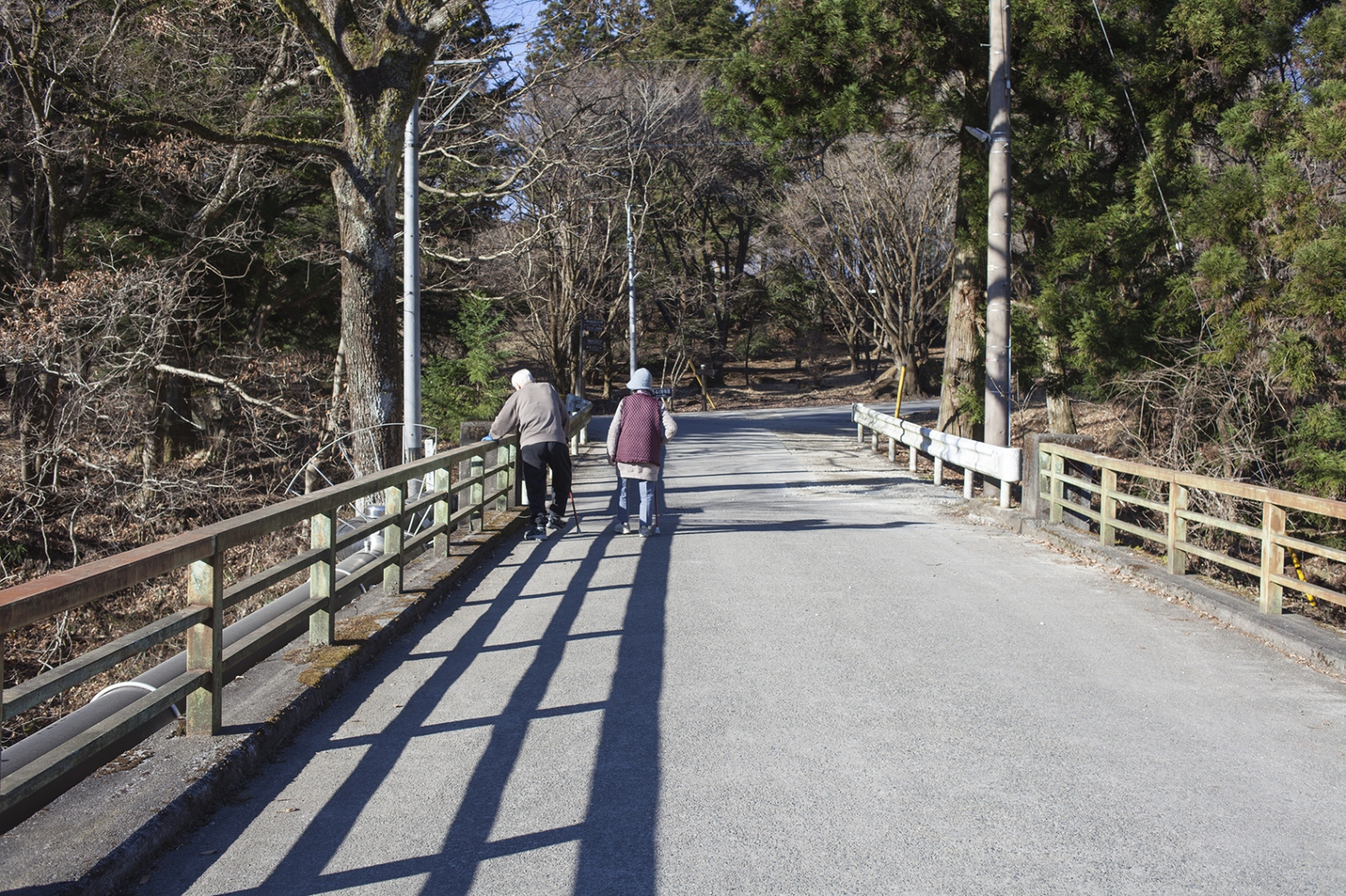 Elderly couple walking, Japan 2015.