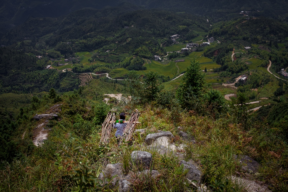 The Grandmother of the Huang Family, Zhu Huaxiang, climbs a mountain with her daughter-in-law, Li Xiaowei, to cut wood for cooking and heating. It is hard work and sometimes the women climb the mountain twice in one day. In rural Chinese families, women are frequently the ones who shoulder the burden of providing for their family and raising the children. However, it is still considered more preferable to have a son then a daughter.