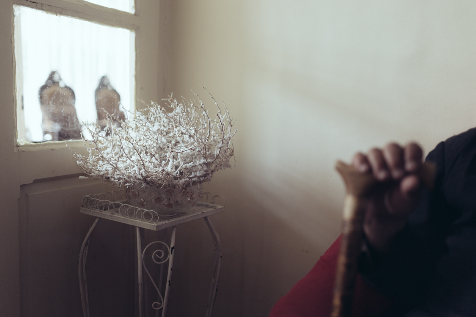 A Thistle with salt crystals that my grandmother found in the lake. She uses it as a decoration in her home.Sharafkhaneh port|East-Azerbaijan|Iran.2014