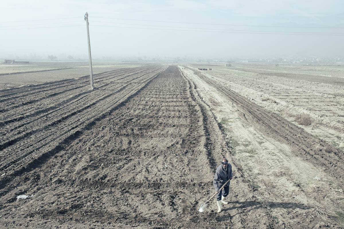 Agriculture is a major cause for water imbalance in the Lake Urmia basin. According to the local farmers near Lake Urmia, basin crop yields are decreasing, and this is believed to be due to soil salinization. Dried up gardens are seen in Sharafkhane Port|East-Azerbaijan|Iran.2015