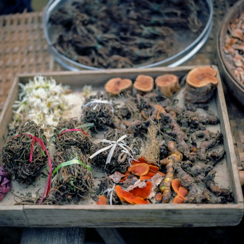 Traditional Chinese medical herbs.