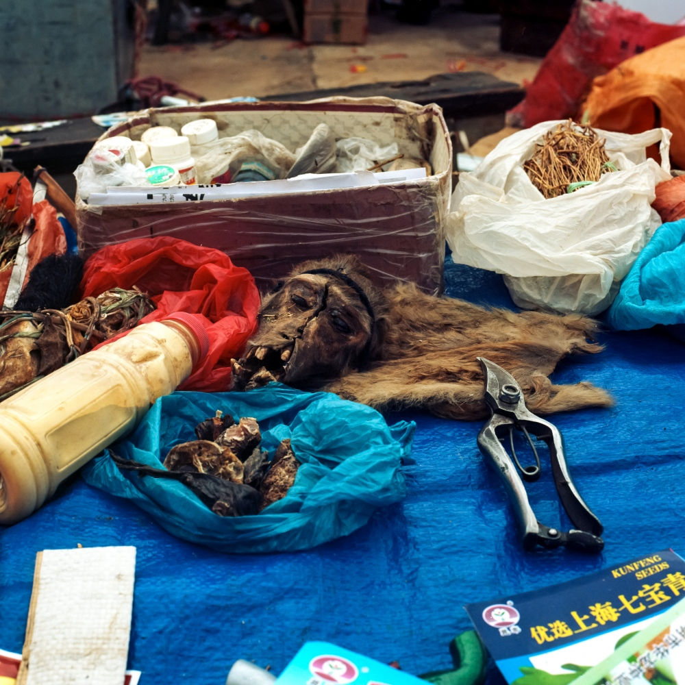 Art and Documentary Photography - Loading 0023_Mary-Estes_China-Healthcare-Yunnan-Market_10-15-2014_1494.jpg