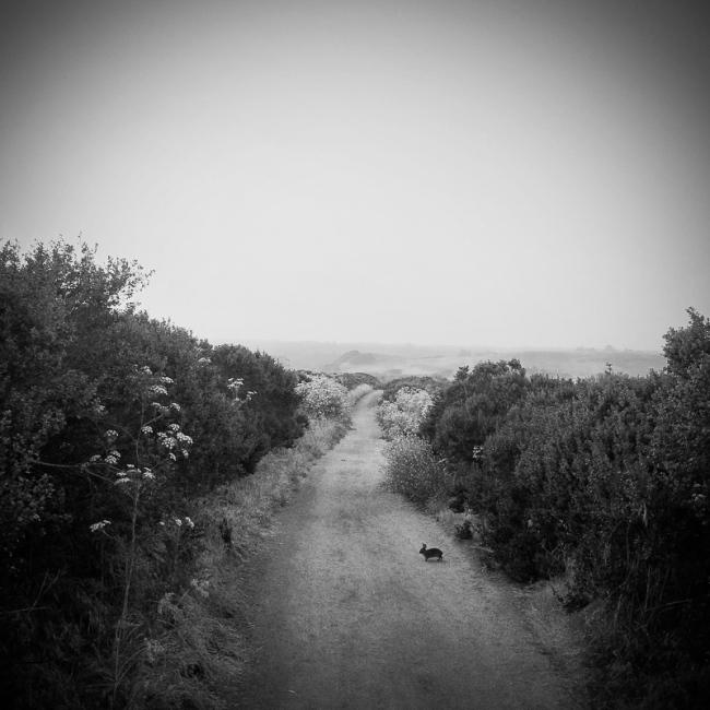 Photography image - Loading Matt_Propert_monochrome-1.jpg