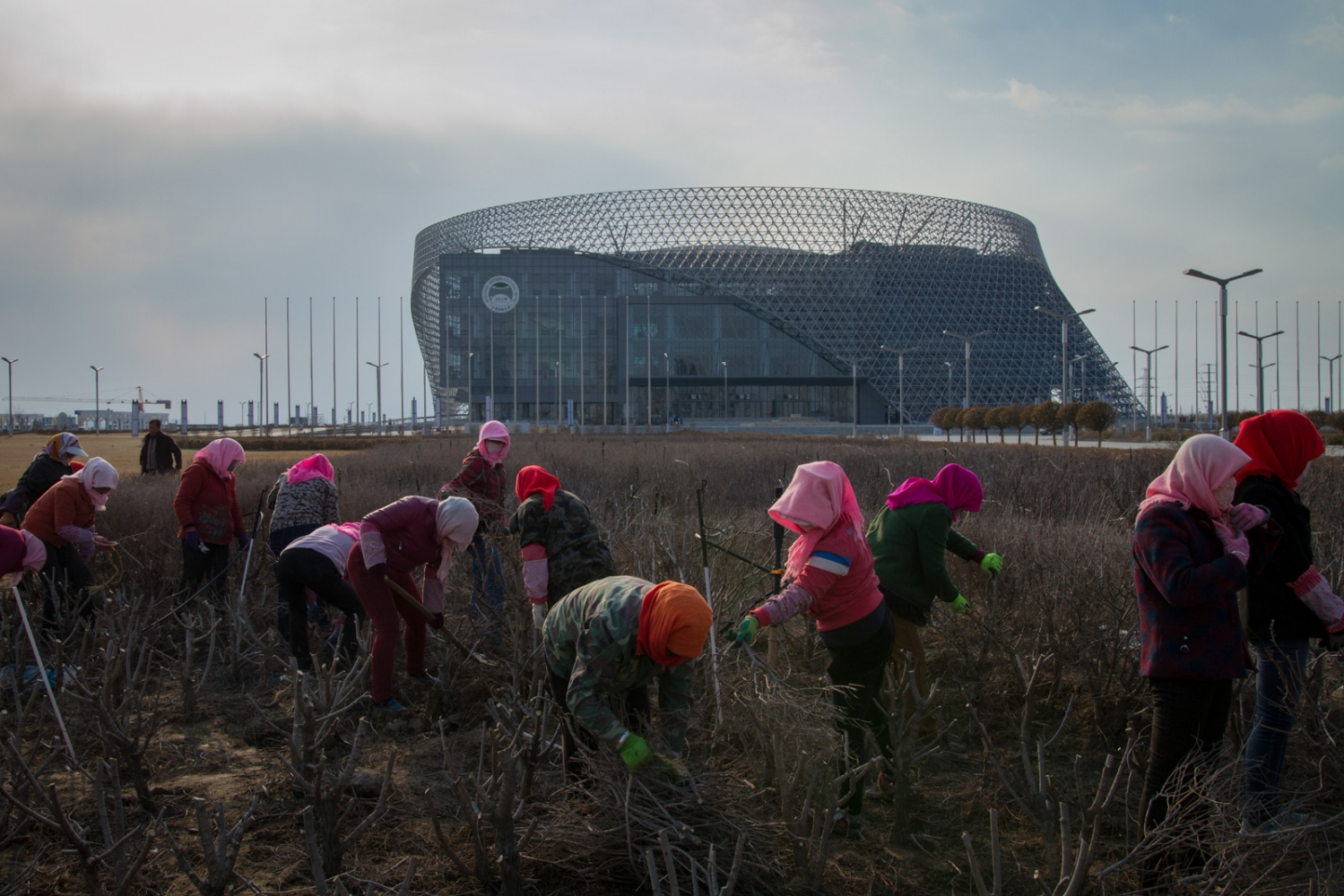 Workers attend to the landscaping in front of Ningxia International Hall, which was completed in 2015 and was the site of the China-Arab States Expo the same year.