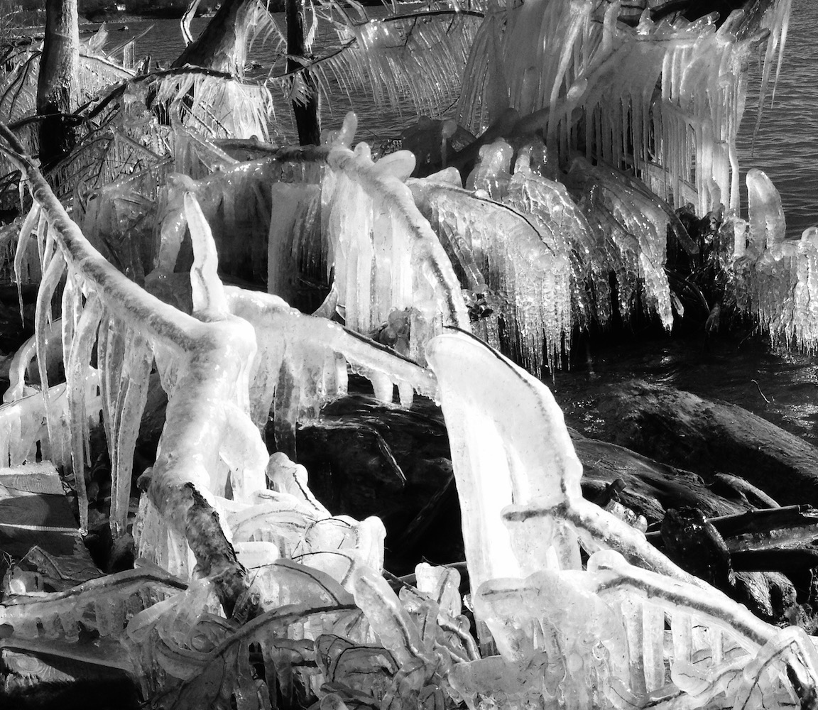 Art and Documentary Photography - Loading ice.jungle.jpg