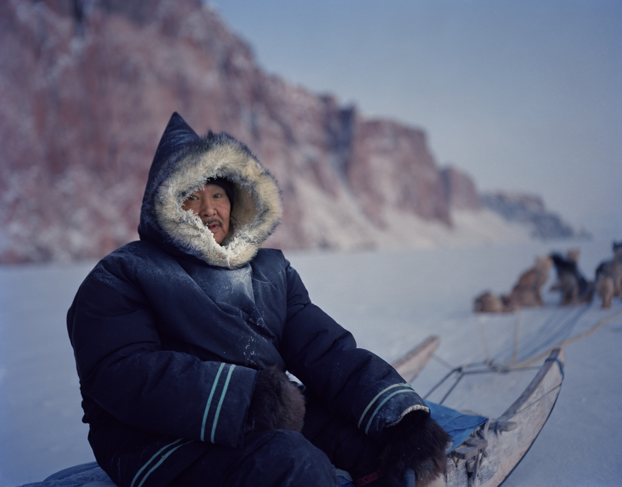 Photography image - Happy Aboriginal Day! Here's in memory of Peugatuk Ettuk, an Inuit elder and dear friend of mine who shared so much knowledge of the Arctic landscape. Arctic Bay, Nunavut, Canada, 2014.