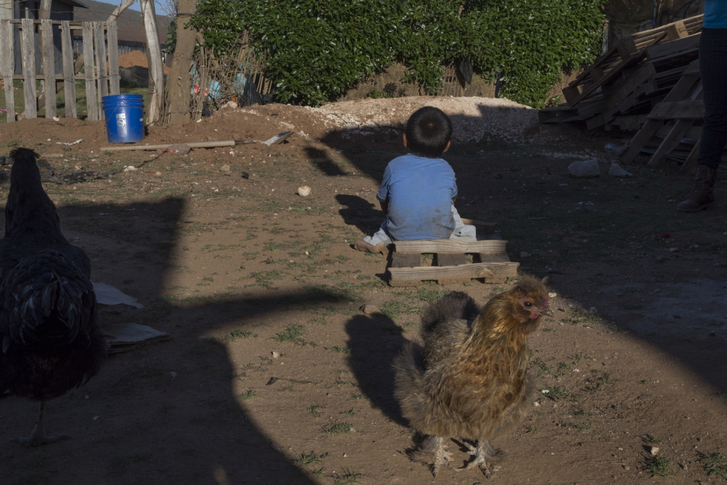 Little Felis plays outside his humble house in Mexico's San Quintin valley.