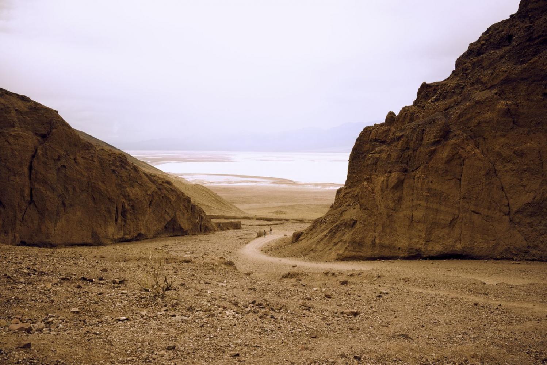 Art and Documentary Photography - Loading Desert-Flowers-_1643-web.jpg