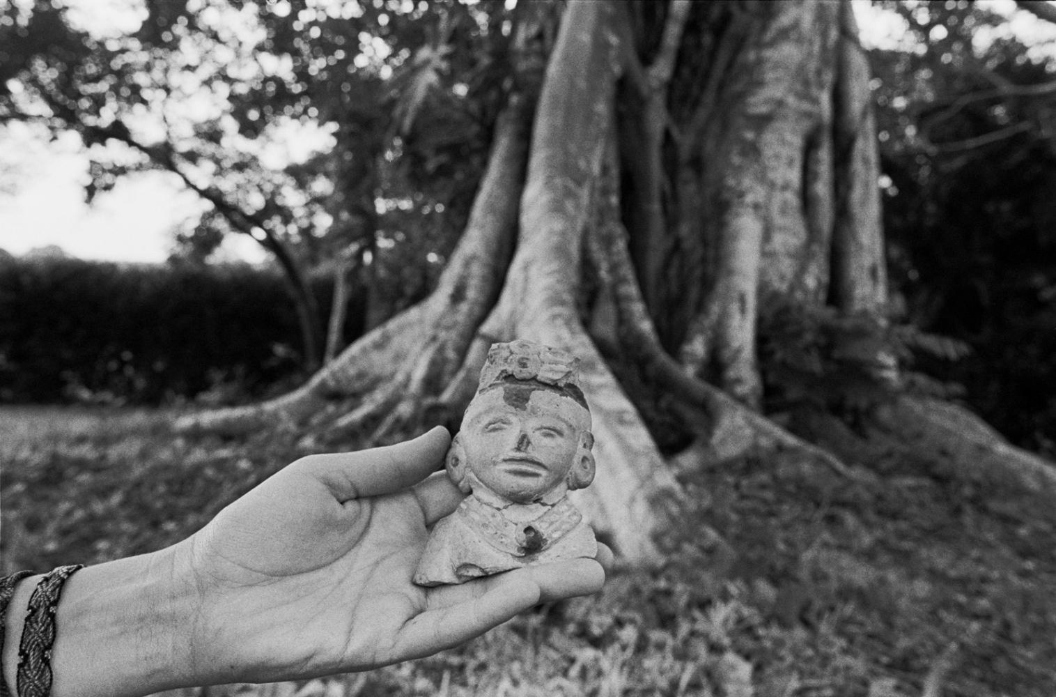 Las Raices, RanchoEl Bejuco, Ozuluama, Veracruz - 2010© Sylvi de Swaan