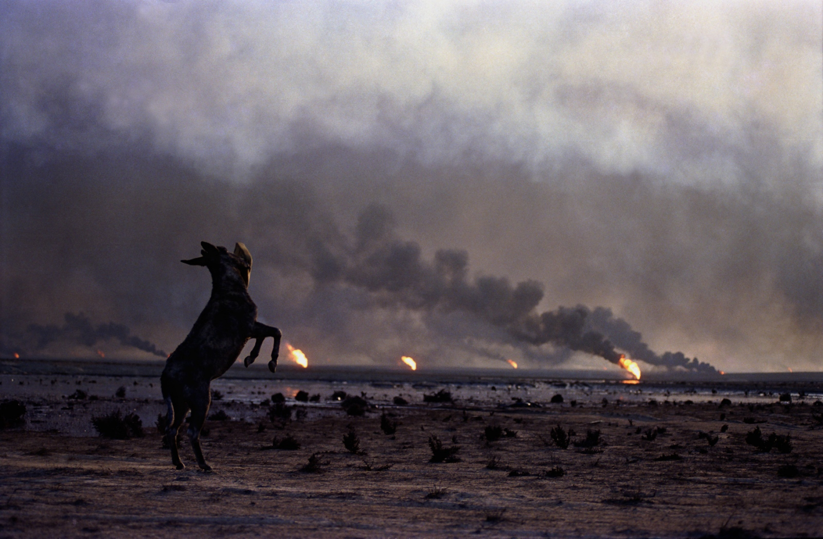 Oil fires set by retreating Iraqi troops raged throughout Kuwait at the end of the Gulf War in 1991.