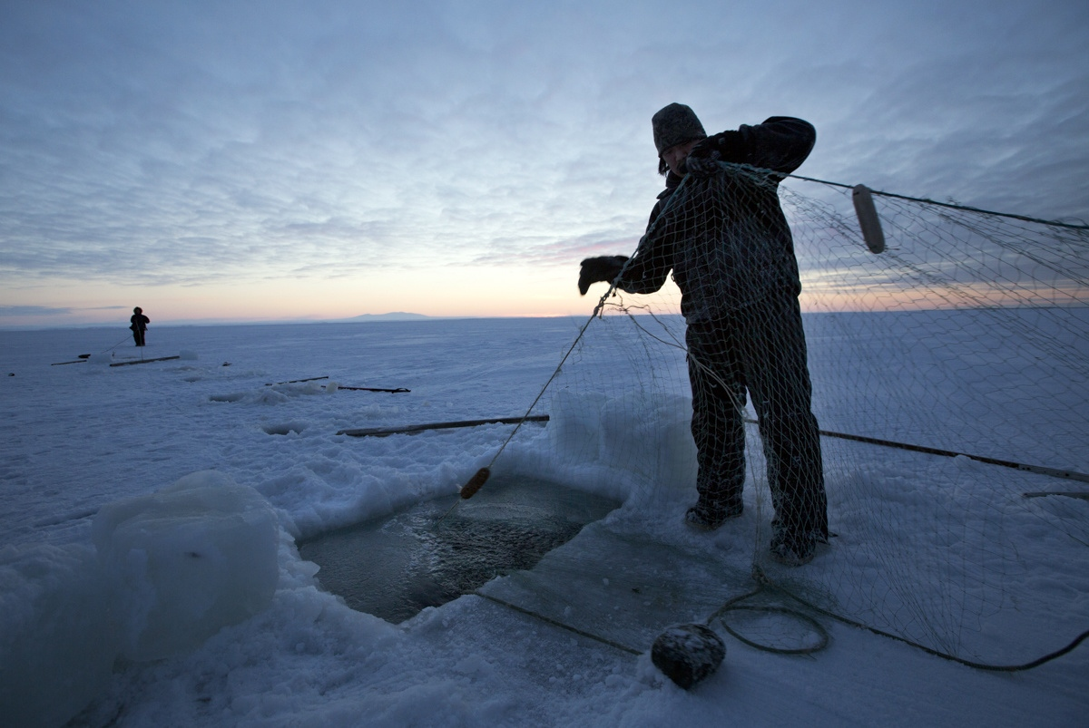 After breaking the ice, Andrew Ningealook, 26, and his cousin Thomas Eningowuk, 32, lay their fishing net under the ice. They will leave the net for several days before returning to check if they have caught anything. Fishing has become less abandonment because with the seals have access to the lagoon from the sea now that the sea takes longer to freeze.