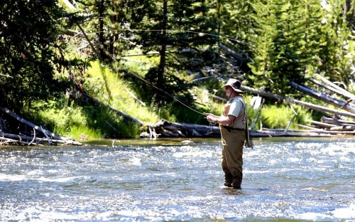 Montana has been a destination for its world-class trout fisheries since the 1930's. Fly fishing for several species of native and introduced trout in rivers and lakes is popular for both residents and tourists throughout the state.