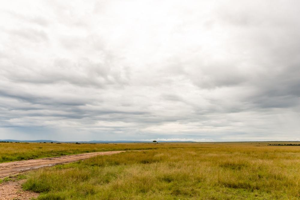 Photography image - Loading Kenya-2.jpg