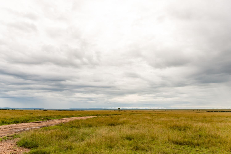 Art and Documentary Photography - Loading Kenya-2.jpg