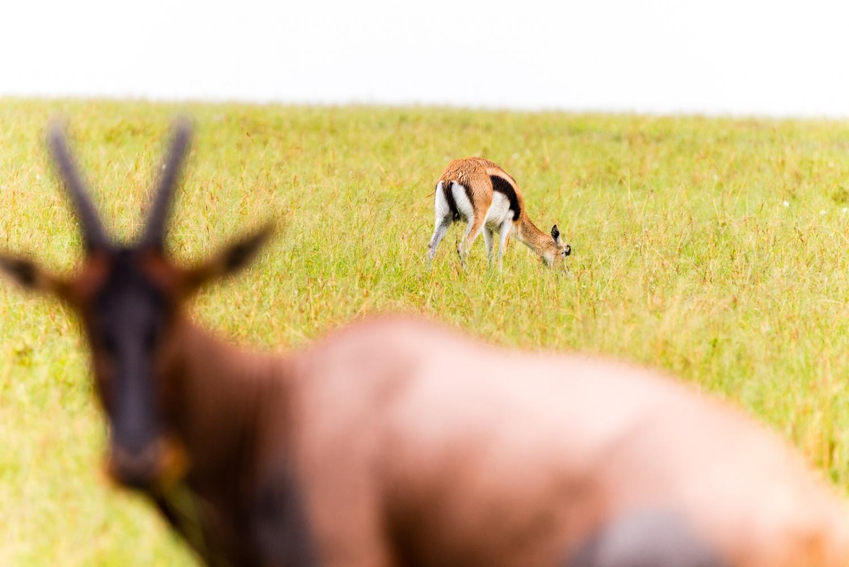 Art and Documentary Photography - Loading Kenya-9.jpg