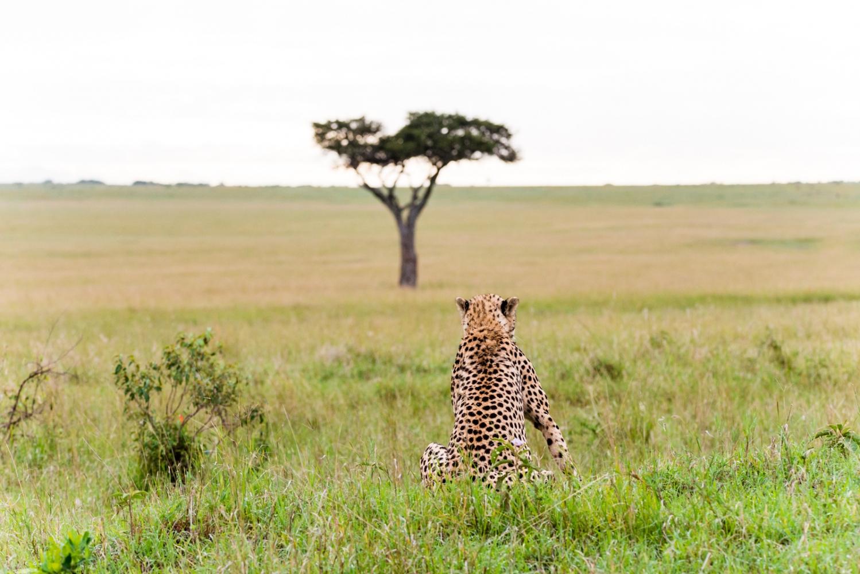 Art and Documentary Photography - Loading Kenya-28.jpg
