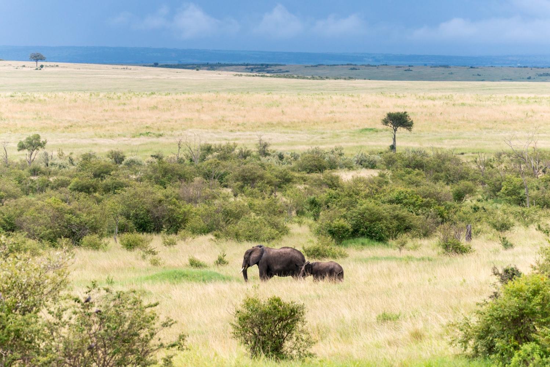 Art and Documentary Photography - Loading Kenya-40.jpg