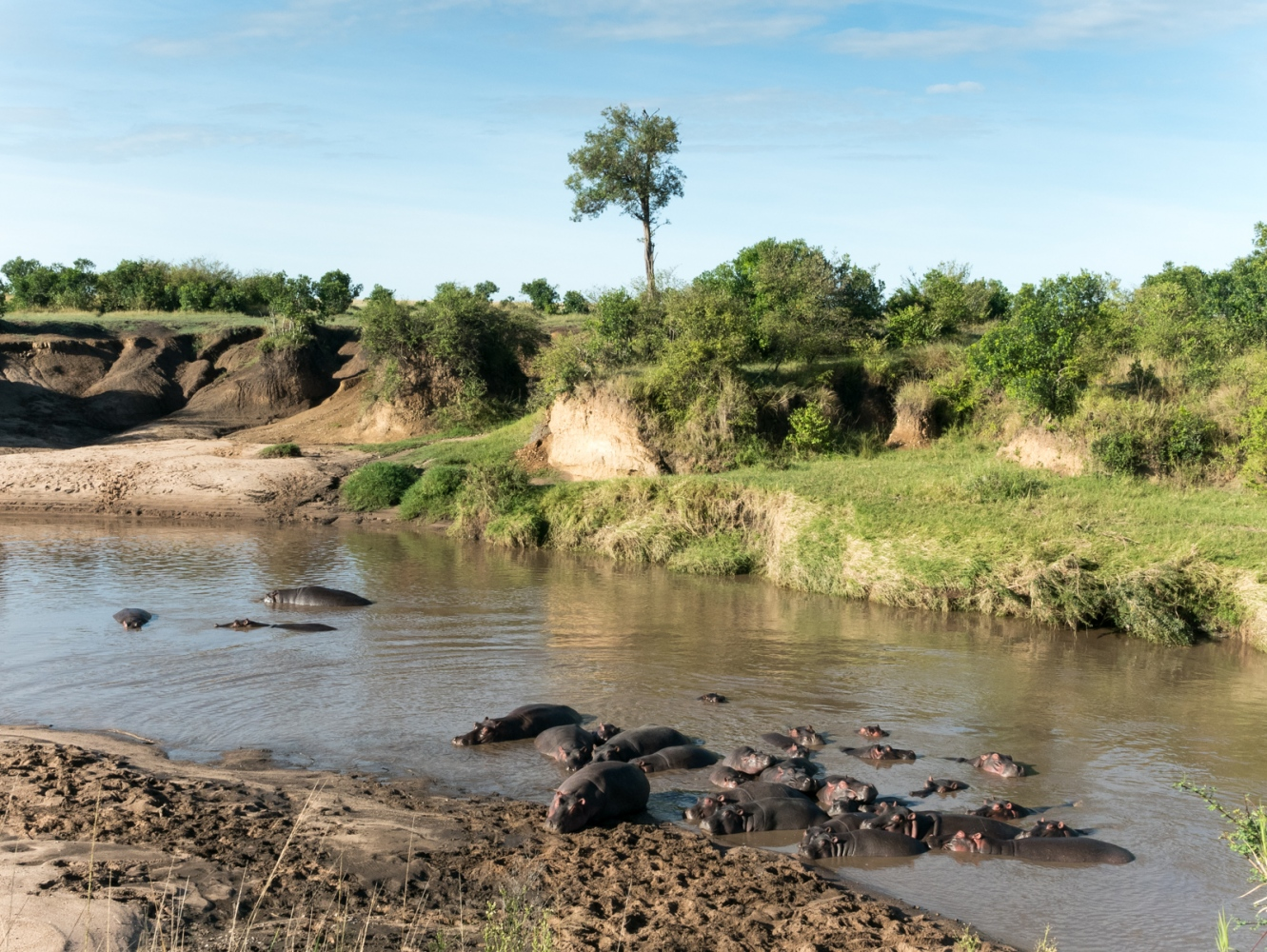Art and Documentary Photography - Loading Kenya-53.jpg