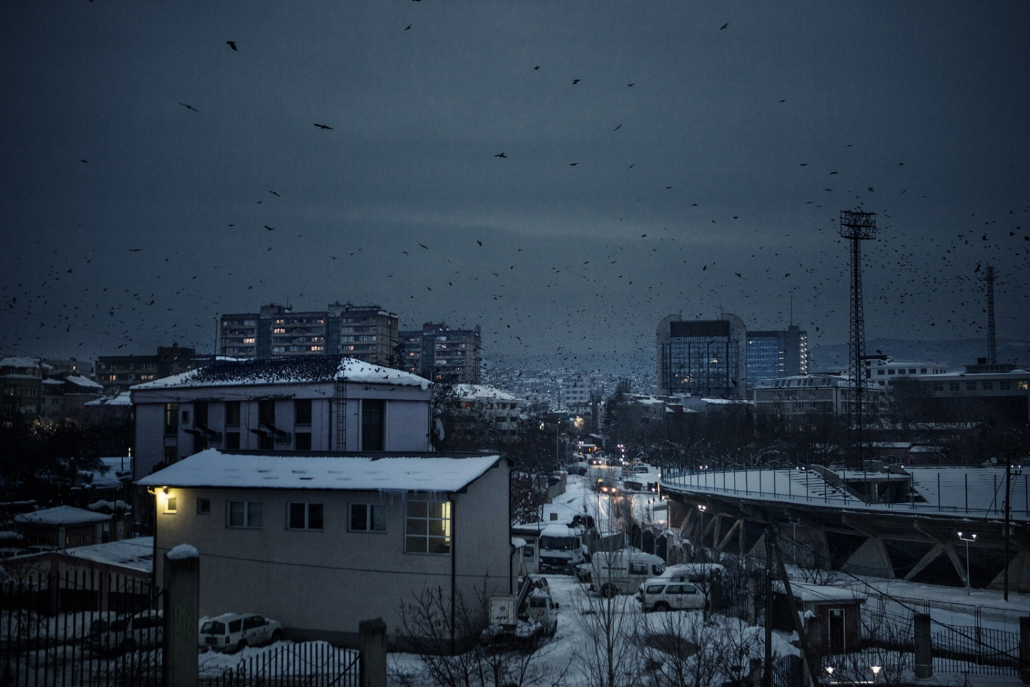 Kosova, Pristina, 2012: Pristina is the capital and the largest city of Kosova and it is the seat of government and of major universities. The crows, which were said to have left the city during the war, now are back and their cawing continues to be the soundtrack of the Kosova capital city.